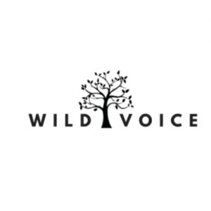 Glamping at Wild Voice Festival